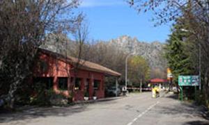 Camping Pico de la Miel